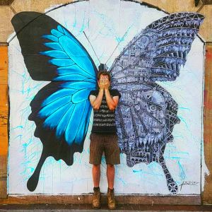 Ardif : Butterfly mechanimal big